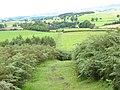 Bridleway to Flasby - geograph.org.uk - 534510.jpg