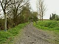Bridleway to Pleshey - geograph.org.uk - 785793.jpg
