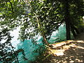 Bright water (7566207746).jpg