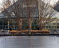 Brooklyn Botanic Garden conservatory (60594).jpg