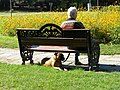 Bucharest, Romania. Grandfather and his best friend, the dog.jpg