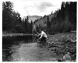 Umatilla River - Trout fishing at Buck Creek Organization Camp in Umatilla River (September 1956)