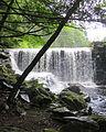 Buffam Falls.JPG