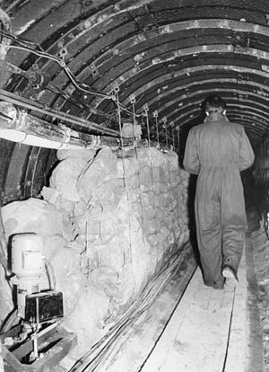 Secret Intelligence Service - Operation Gold: the Berlin tunnel in 1956