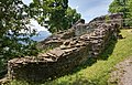 Burg-Hopfen-JR-E-5370-5372-2021-06-28.jpg