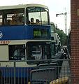 Buses (100075289).jpg