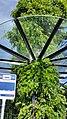 Busstation Heerlen ontwerper kunstenaar Michel Huisman (48014894198).jpg