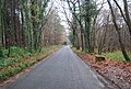 Byway through Pembury Woods - geograph.org.uk - 1065308.jpg