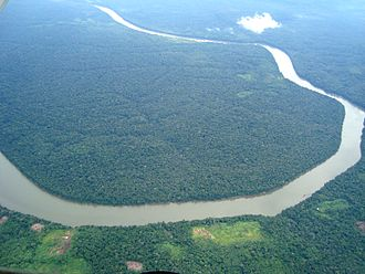 Amazon basin - Aerial view of part of the Amazon rainforest.