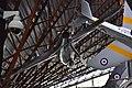 Canadair Sabre F4 (50115774306).jpg