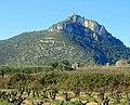 Capella de la Verge del Vinyet (Castellví de la Marca) - 1.jpg