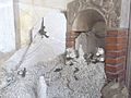 Carrara-cattedrale-presepe di marmo2.jpg