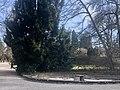 Cemetery Sihlfeld A.jpg