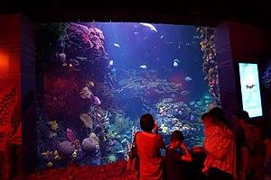 Changfeng Park - Changfeng Park aquarium