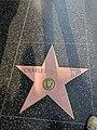 Charles Bronson Hollywood Star.jpg