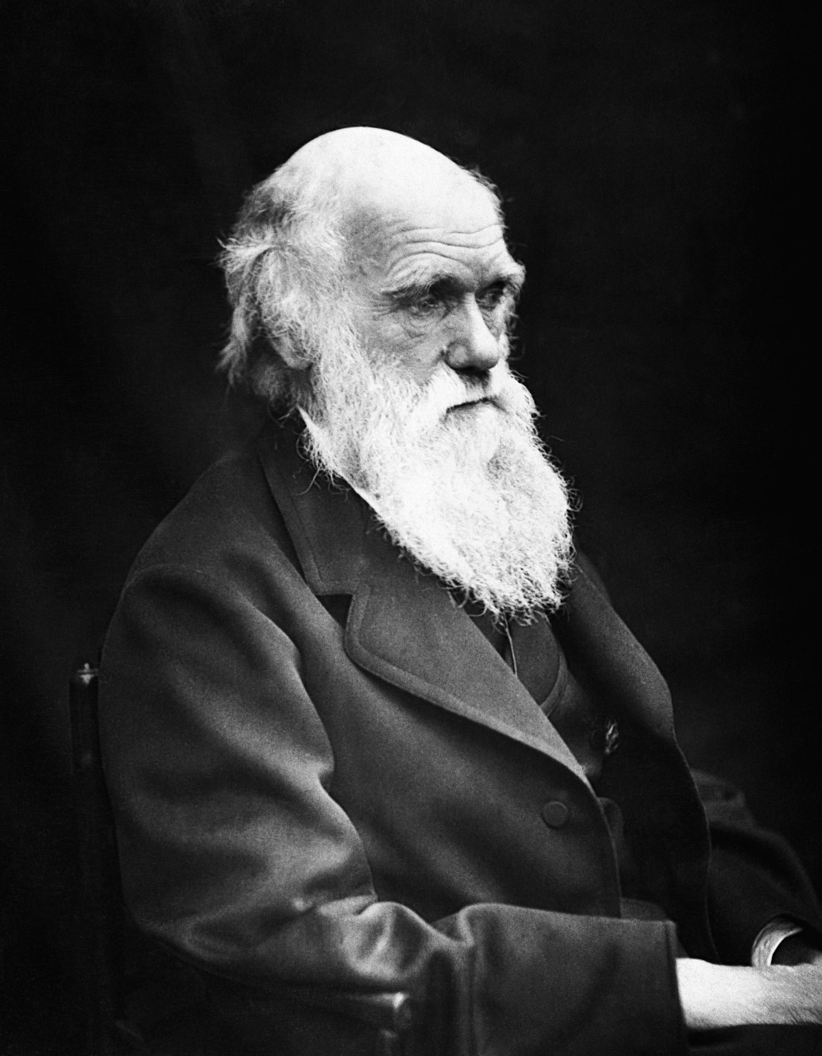 religious views of charles darwin