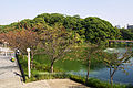 Chausuyama01s3200.jpg