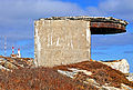 Chebucto Head Lighthouse (1).jpg