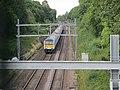 Chelmsford, UK - panoramio (24).jpg