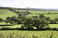 Cheriton Fitzpaine, towards Hannabeth - geograph.org.uk - 232527.jpg