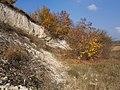 Cherkas'kyi district, Cherkas'ka oblast, Ukraine - panoramio (382).jpg