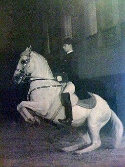 Chief Rider Georg Wahl