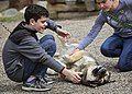 Children pet a sled dog before the dog demonstration at the Denali Kennels on May 27, 2019. (c0d1c00a-7dfc-4d9b-b639-83b928240a82).JPG