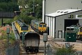 Class 66s and Class 70s lined up at Midland Road.jpg