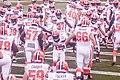 Cleveland Browns vs. Atlanta Falcons (29136411185).jpg