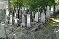 Cmentarz Żydowski zdjęcie nr IV.jpg