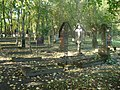 Cmentarz kanoników we Fromborku, groby.jpg