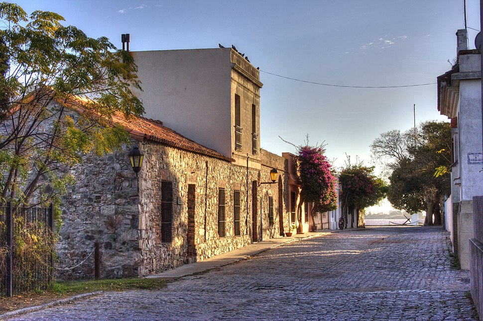 Colonia-Calle San Pedro-TM