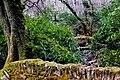 Connemara - Kylemore Abbey - Landscape - geograph.org.uk - 1623338.jpg