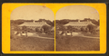 Conservatory, from Robert N. Dennis collection of stereoscopic views.png