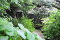 Convento dos Capuchos 0618.jpg