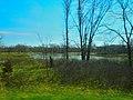 Copper Creek Marshland - panoramio.jpg