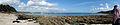 Cornwall Fae16.jpg