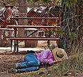 Cowgirl Dreams, Bryce, UT 9-09 (16273301467).jpg