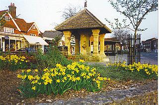 Cranleigh Human settlement in England