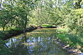 Creek Viewed from Bridge on Allison Road London Township Michigan.JPG