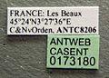 Crematogaster scutellaris casent0173180 label 1.jpg