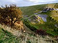 Cressbrook Dale, near Litton - geograph.org.uk - 1590215.jpg