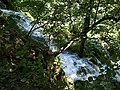 Croatia P8144694 (3939023098).jpg
