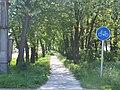 Cycle lane - panoramio (1997).jpg