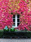 Dülmen, Haus Osthoff -- 2012 -- 8846.jpg