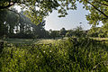 Dülmen, Naturschutzgebiet -Karthäuser Mühlenbach- -- 2014 -- 0220.jpg
