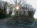 December view of Ryton Coppice - geograph.org.uk - 1065964.jpg