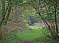 Deer in Garston Wood - geograph.org.uk - 304556.jpg