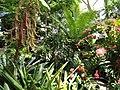 Denver Botanic Gardens - DSC00907.JPG