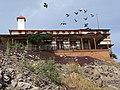 Derelict Hospital with Birds in Flight - Santa Rosalia - Baja California Sur - Mexico (24073478305).jpg